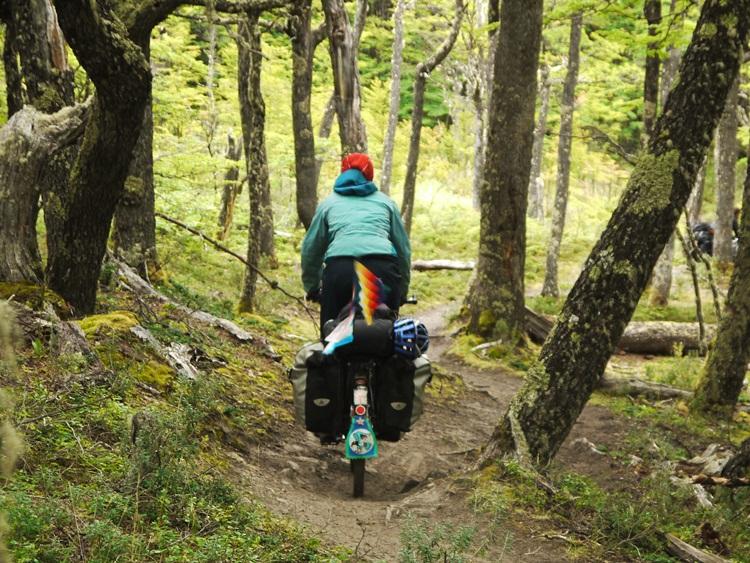 bike woods