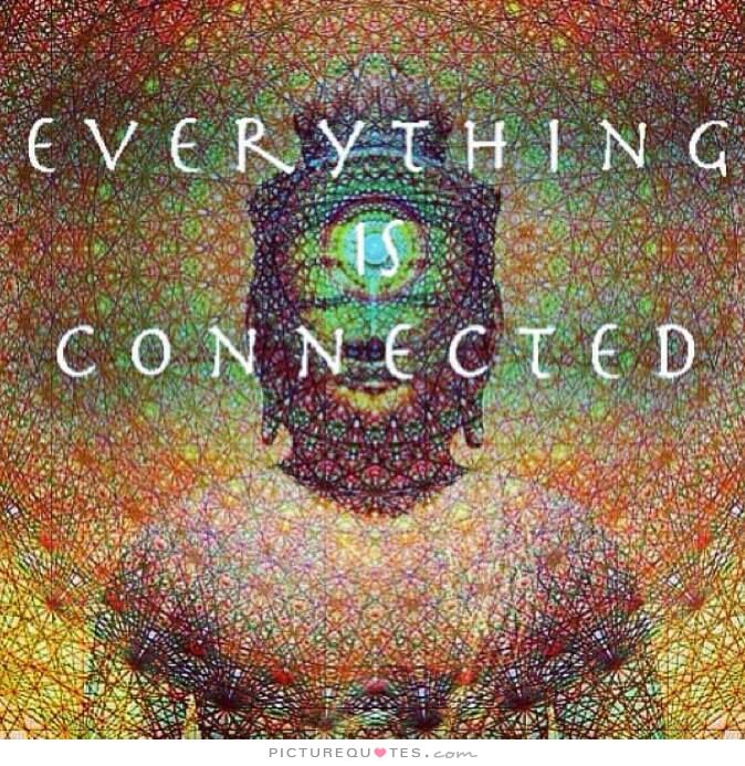 everything-is-connected-quote-1