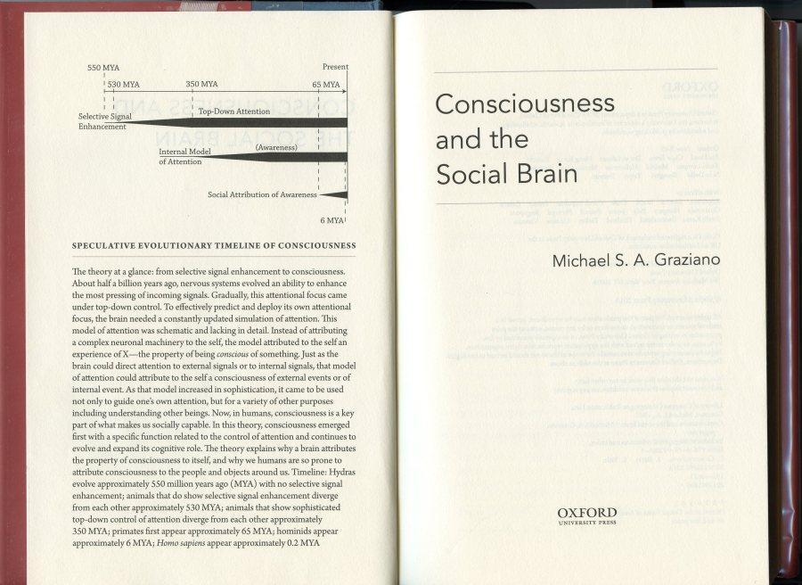 social brain.jpg